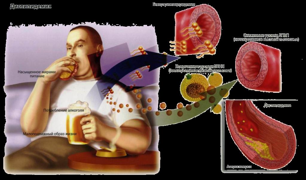 Сладости при повышенном холестерине