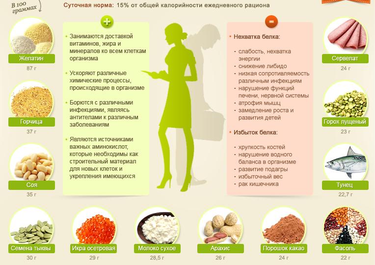 Польза белка для организма