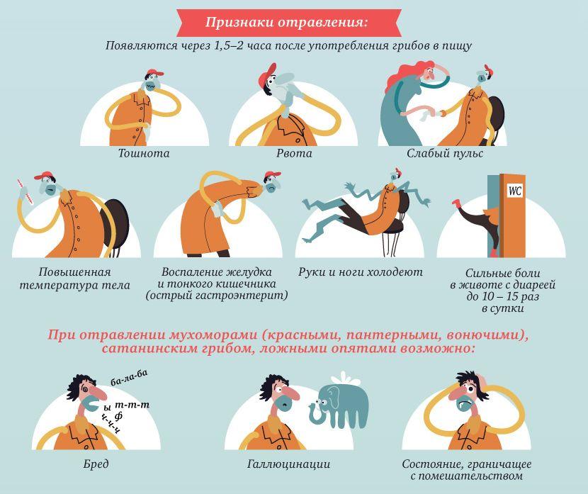 очищение организма в москве