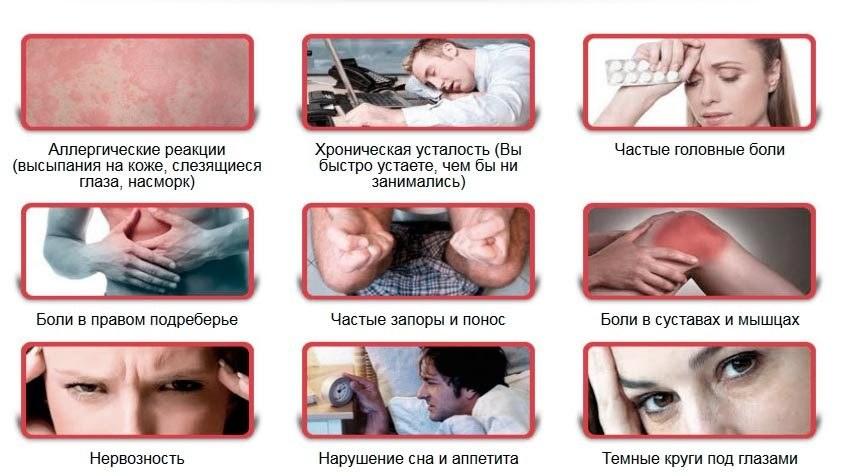 паразиты в животе человека симптомы