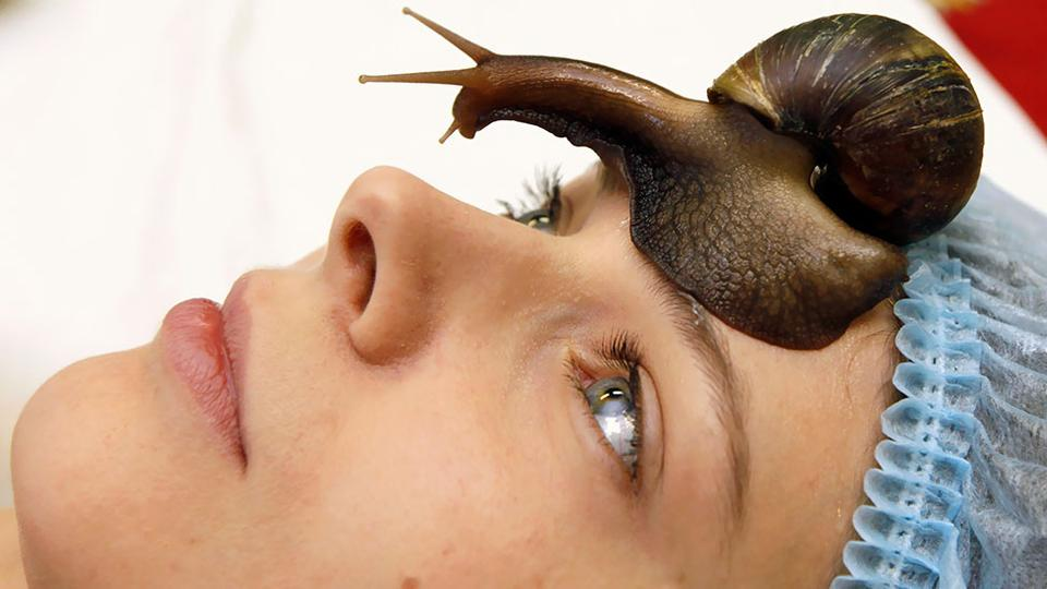Использование улиток в косметологических целях
