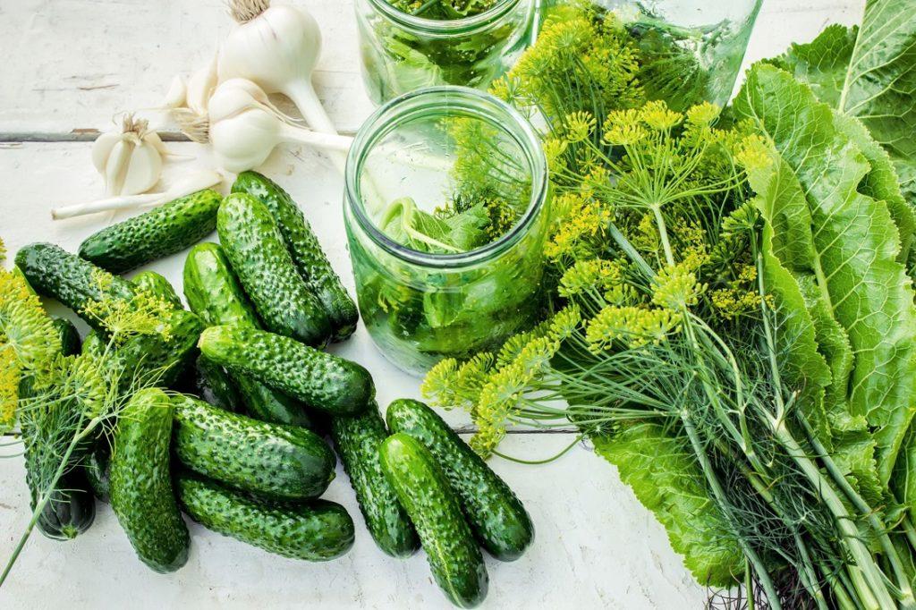 Огурцы с зеленью и чесноком