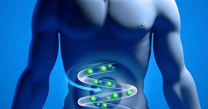 Очистка от токсинов в желудочно-кишечном тракте
