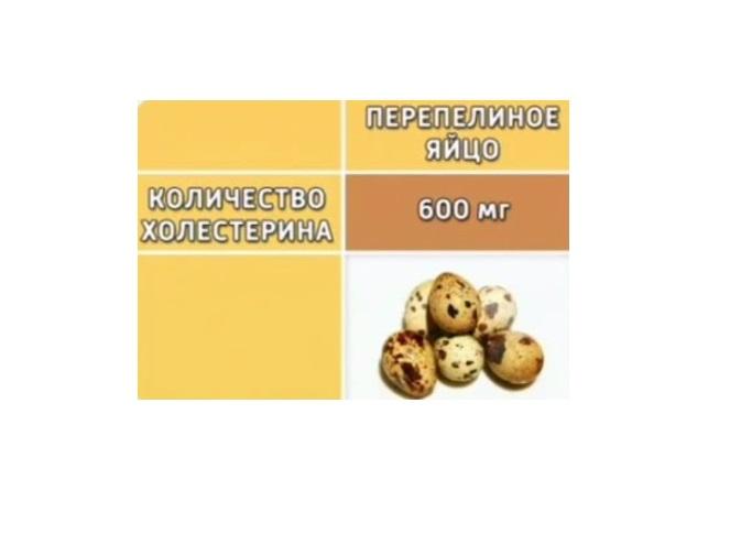 Холестерин в перепелиных яйцах